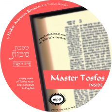 Master Tosfos Makkos Perek 1
